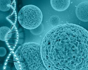 S²RM® Core Technology - NeoGenesis Inc
